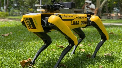 Singapur testuje robotického psa