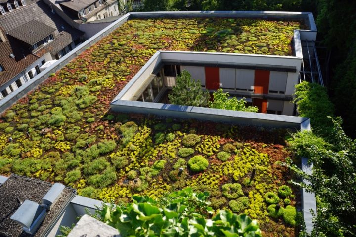 green roofs smart city